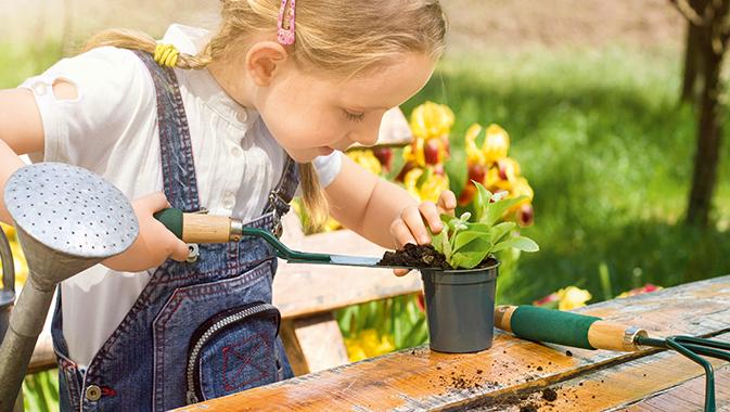 Mädchen pflanzt