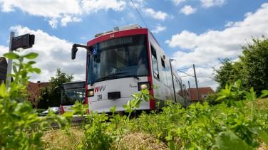 Straßenbahn_Bus_WVV_Nachhaltigkeit
